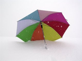 paraplu bedrukken met foto